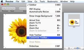 View Customize Toolbar