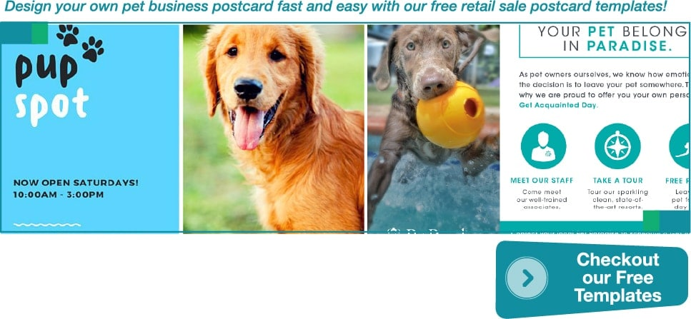 Pet Business Marketing Guide: Boost Sales with Online Printing